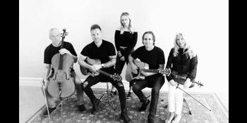 The Stringbirds - Showcase