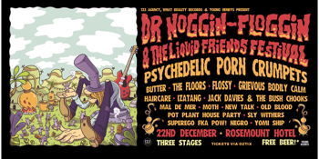 Dr Noggin-Floggin & The Liquid Friends Festival