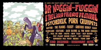 Dr Noggin-Floggin & The Liquid Friends Festival