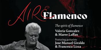 Aire flamenco Tablao