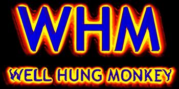 Well Hung Monkey | Album Launch